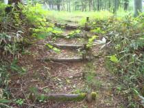 施工前  長年の風雨により経年劣化したアプローチ階段の丸太