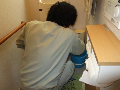 トイレ水抜き2